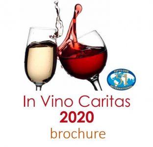 IVC_brochure2020